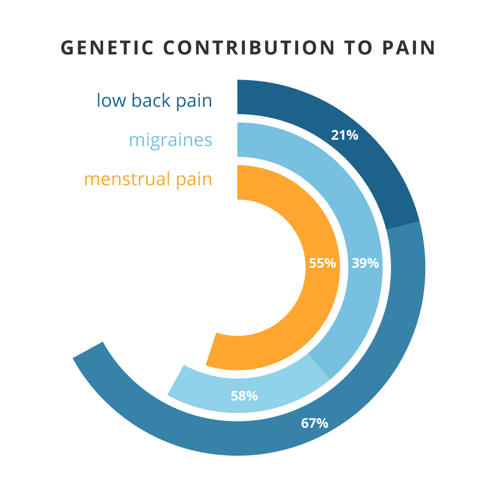 Genetic Contribution to Pain Chart: Low Back Pain (21% to 67%), Migraines (39% to 58%), and Menstrual Pain (55%)
